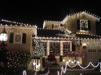 Christmas Lights in San Carlos