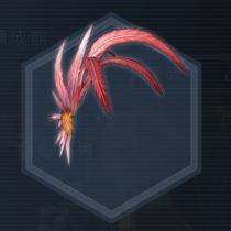 風鳥仙羽冠:濃縮染料