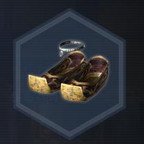 才媛靴:濃縮染料