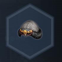 紅椿媛帽:濃縮染料