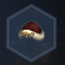 紅椿媛帽:染色前