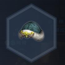紅椿媛帽:粉末染料