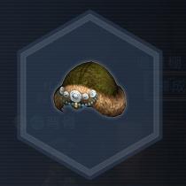 紅椿媛帽:液体染料