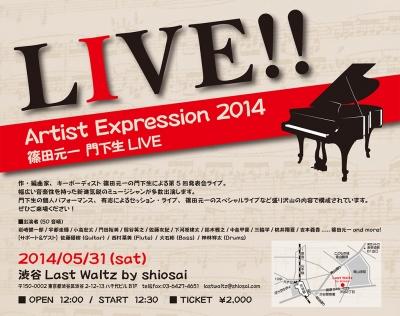 Artist Expression 2014
