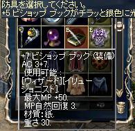 20090331_19
