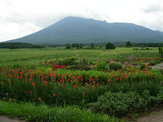 岩手山と花園