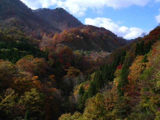赤林山付近