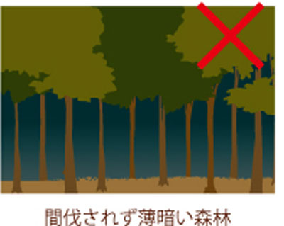 mokumoku1.jpg