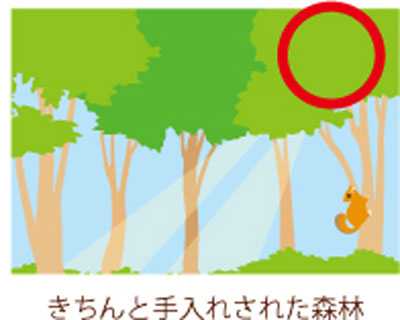 mokumoku2.jpg