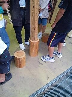 小学六年生の木の勉強 (2)