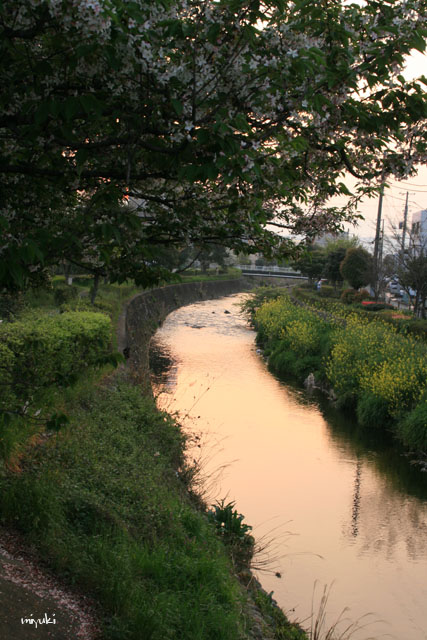 川面にうつる空の色