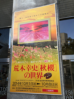 荒木幸史「秋桜」の世界