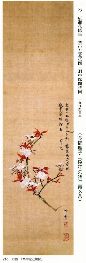 左近の桜の絵のコピー.jpg