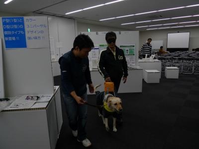 盲導犬体験中
