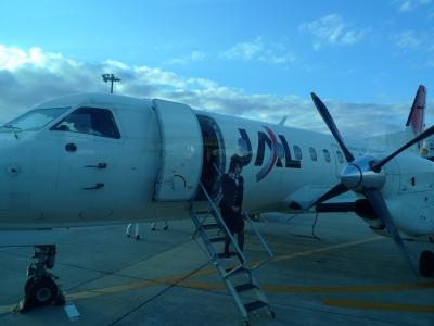 伊丹空港SAAB