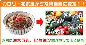 ★ カメヤマ酵母 (ダイエット食品) ★