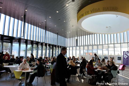 アイスランド大学のカフェ
