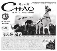 チャオ55