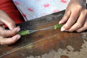 蓮の繊維をとる