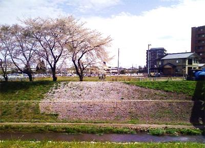 Hanatirashi