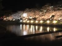 国宝松本城のお堀