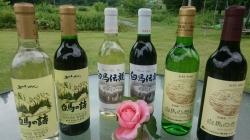 五一・四賀・アルプスワイン
