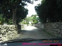 白保村の集落地。