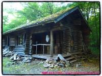 丸太の家。