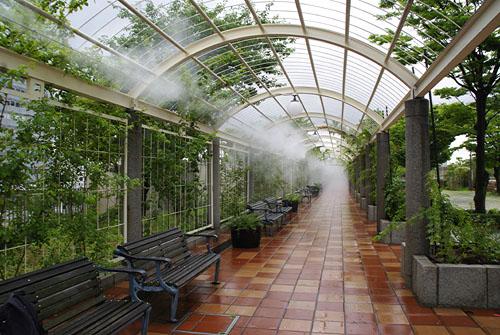 霧にけぶる天王寺公園の通路