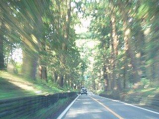 日光街道をひた走る