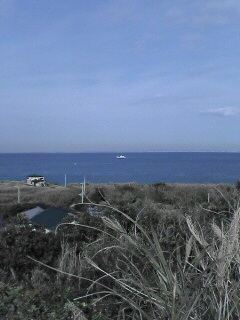 洲崎灯台から太平洋を眺める