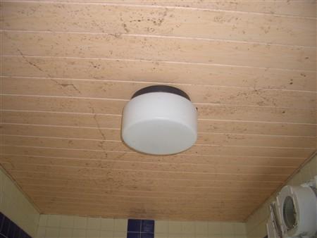 お風呂の天井のカビ掃除前