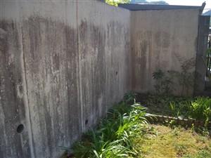 コンクリート 壁高圧洗浄 前