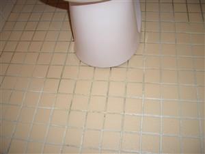 トイレ 床 タイル 掃除 前
