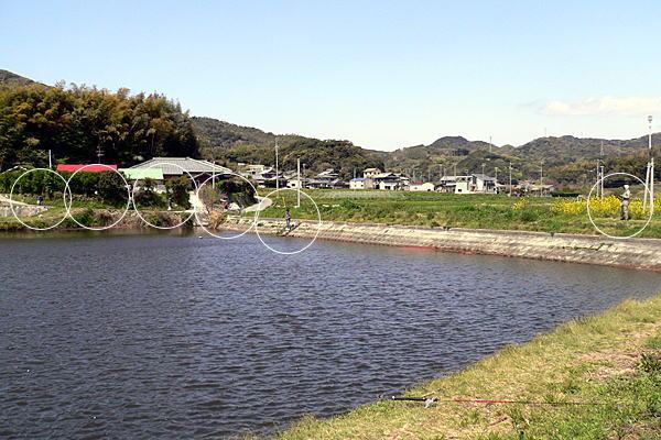 ポイント 淡路島 バス 釣り