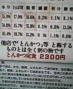 040806_1610~01.JPG