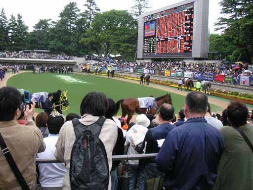 すいてる雨の日のG�パドック@NHKマイルC