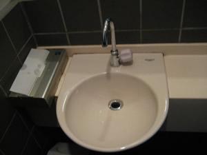 古の花のトイレ