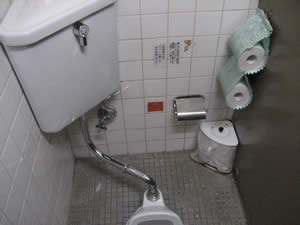 橘のトイレ