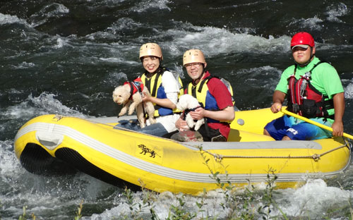 ニセコ犬も一緒に川下り