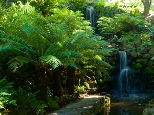 メルボルン 王立植物園