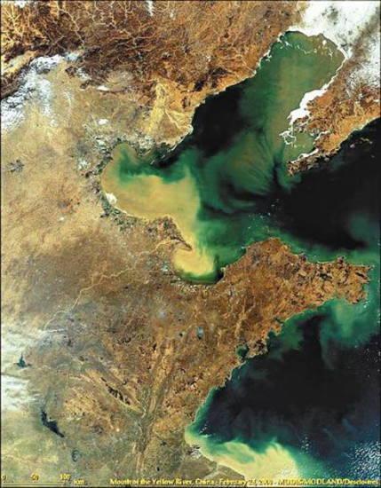中国海洋汚染