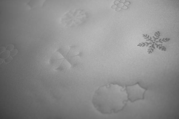 680.雪花.JPG