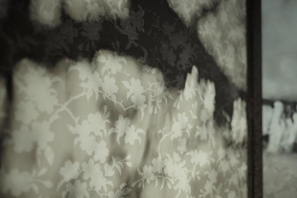 739.枝桜.JPG