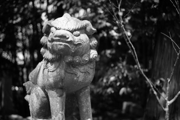 741.粟田神社:唐獅子.JPG