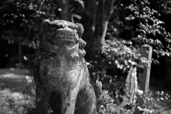 742.粟田神社:唐獅子.JPG