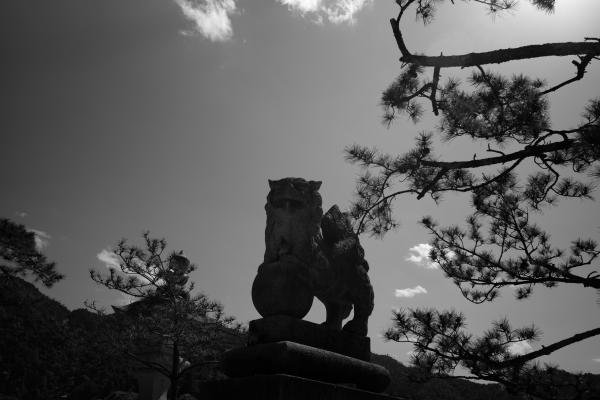 820.唐獅子.JPG