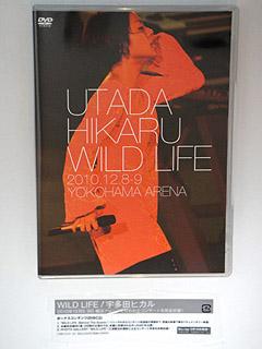 WILD LIFE DVD