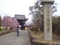 道明寺 photo by Iさん