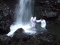 先生、サバちゃんを滝に押し戻します